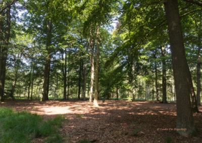 kabouterberg wandeling 029