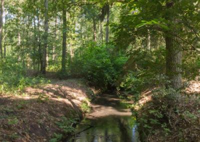 kabouterberg wandeling 031