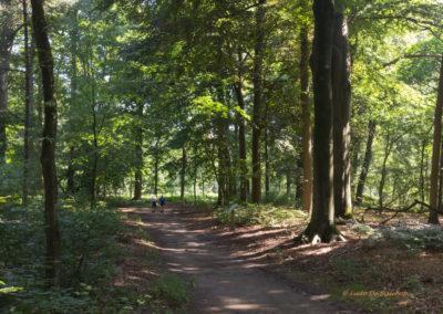 kabouterberg wandeling 033